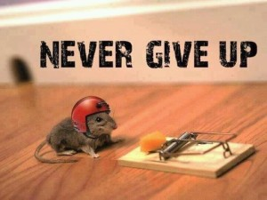 never_giveup_03